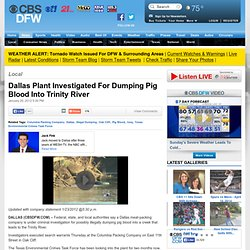 Dallas Plant Investigated For Dumping Pig Blood Into Trinity River