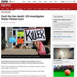 US Investigates Dentist