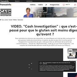 """FRANCE 2 18/06/19 VIDEO. """"Cash Investigation"""" : que s'est-il passé pour que le gluten soit moins digeste qu'avant ?"""
