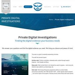 Private Digital Investigations - Cyber Guardian