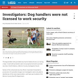 Investigators: Dog handlers were not licensed to work security