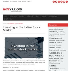 Investing in the Indian Stock Market