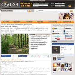 Investir dans une forêt : guide pratique