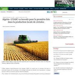 Algérie- L'OAIC va investir pour la première fois dans la production locale de céréales - Maghreb Emergent