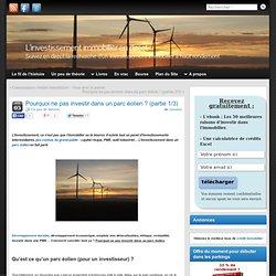 Pourquoi ne pas investir dans un parc éolien ? (partie 1/3)