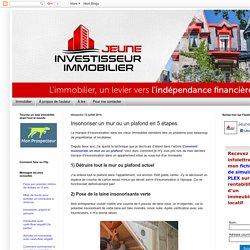 Jeune investisseur immobilier: Insonoriser un mur ou un plafond en 5 étapes