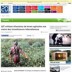 227 millions d'hectares de terres agricoles aux mains des investisseurs internationaux
