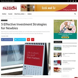 5 Effective Investment Strategies for Newbies - Pursuit of Passion