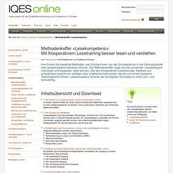IQES online