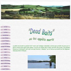 _Dead Baits fishing
