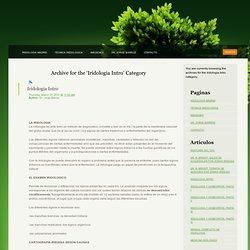 Iridologia Intro « Iridologia Madrid
