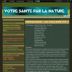 IRIDOLOGIE : LA COLLERETTE 1