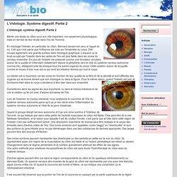 L'iridologie. Système digestif. Partie 2