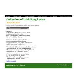 Irish Song Lyrics - Red Is the Rose