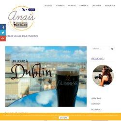Irlande #7 - Un jour à Dublin - Anaïs le Blog