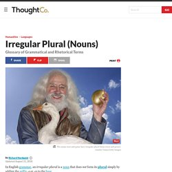 Irregular Plural Nouns: Definitions and Examples