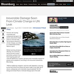 Irreversible Damage Seen From Climate Change in UN Leak