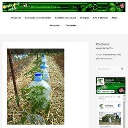 Irrigation solaire au goutte à goutte : une technique gratuite à la portée de tous » ecoloPop