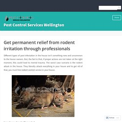 Get permanent relief from rodent irritation through professionals