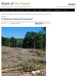 Is Biomass Really Renewable?