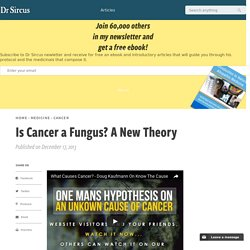 Is Cancer a Fungus? A New Theory