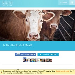 Is This the End of Meat?