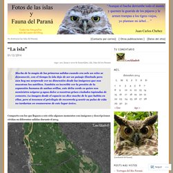 Fotos de las islas y fauna del Paraná.