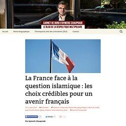 La France FACE A LA QUESTION ISLAMIQUE : les choix crédibles pour un avenir français