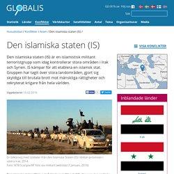 IS, den islamiska staten, Irak, Syrien, aktuella konflikter, FN