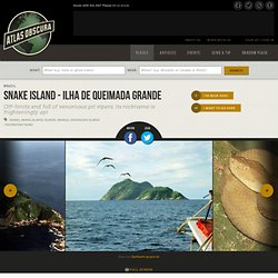 Snake Island - Ilha de Queimada Grande located in Sao Paulo, Brazil