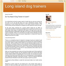 Do You Need A Dog Trainer In Austin?