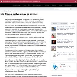 Isle Royale wolves may go extinct