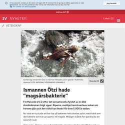 "Ismannen Ötzi hade ""magsårsbakterie"""