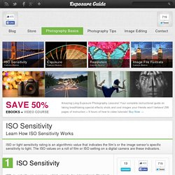 Learn How ISO Sensitivity Works