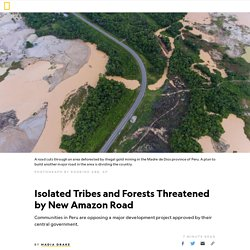 Isolated Tribes and Forests Threatened by Peru's New Amazon Road