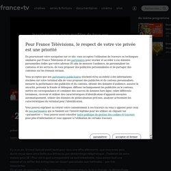 Envoyé spécial - Isolation : des chantiers risqués ? en streaming - Replay France 2