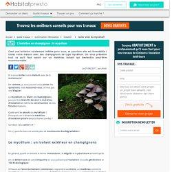 Isoler sa maison en mycélium de champignons