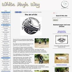 The Art of Chi - Israel, Inner Way International School.