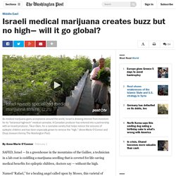 Israeli medical marijuana creates buzz but no high— will it go global?