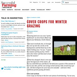 Issue Preview: Cutting the Cost of Hay