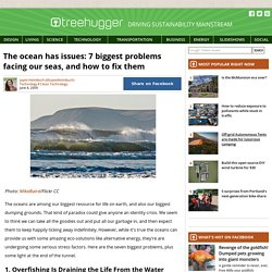 The Ocean Has Issues: 7 Biggest Problems Facing Our Seas, and How to Fix Them