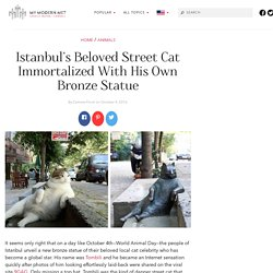 Istanbul's Beloved Street Cat Immortalized With His Own Bronze Statue