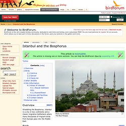 Istanbul and the Bosphorus - BirdForum Opus