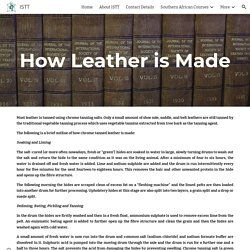 ISTT - How Leather is Made