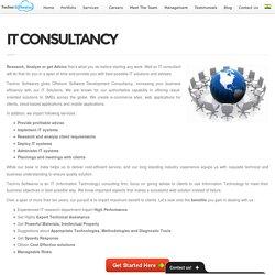 IT CONSULTANCY -