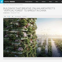 Italian Architect's Vertical Forests to Grow in China