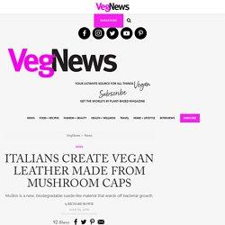 Italians Create Vegan Leather Made from Mushroom Caps