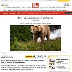 Italie: un militaire agressé par un ours
