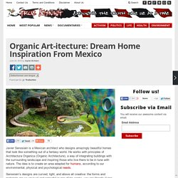 Organic Art-itecture: Dream Home Inspiration From Mexico