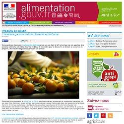 ALIMENTATION_GOUV_FR 07/11/12 L'itinéraire gourmand de la clémentine de Corse